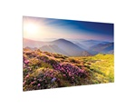 Projecta FullVision screen, Wide (16:10), 188x300cm, HD Progressive 1.3
