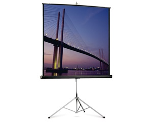 Projecta Picture King Portable and Tripod Screen, 178x178cm